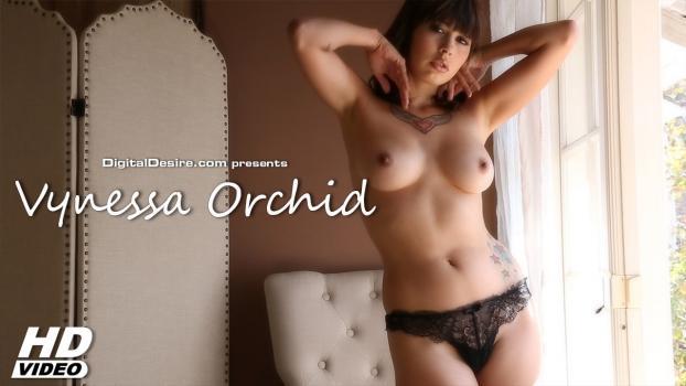 Digitaldesire.com- Vynessa Orchid