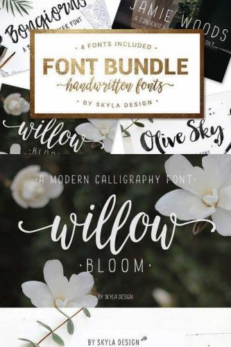 Font Bundle handwritten fonts