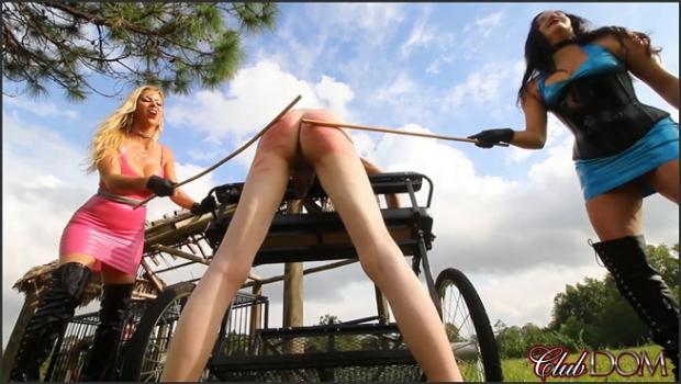 Clubdom.com- Alexis Fawx  Michelle Lacy: Caning A Rack Of Meat