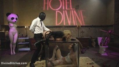 Kink.com- Honeymoon Cuckold At Hotel Divine