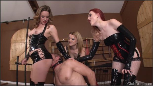 Clubdom.com- Caddle Slave and Chindo Humiliation
