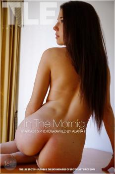 Metartvip- In The Morning 1
