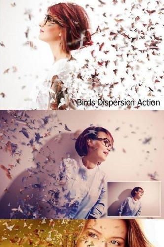 Birds Dispersion Action
