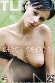Metartvip- Black Pepper